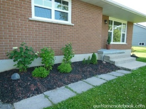 Planting the Front Garden