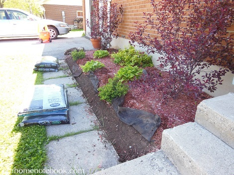 Front Garden - Removing old border1