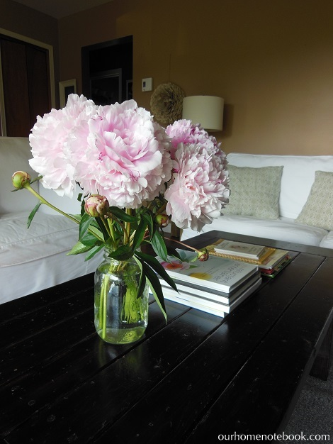 Peonies on coffee table