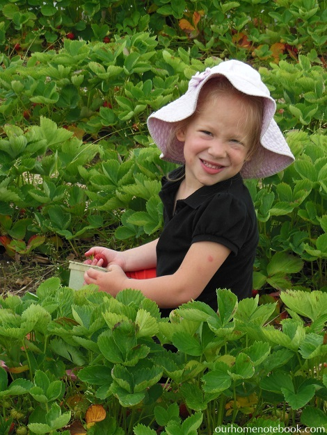Picking Strawberries - Emma
